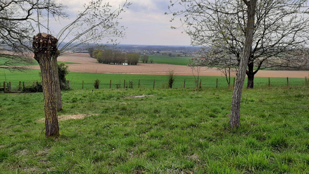 Au crépuscule du Mont-Saint-Aubert - Dernier regard sur le crépuscule