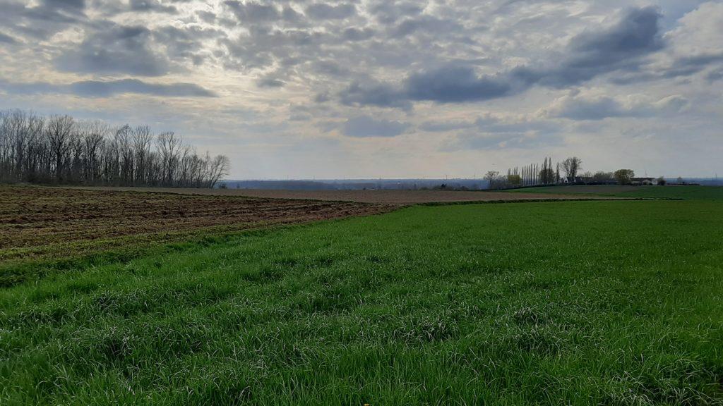 Au crépuscule du Mont-Saint-Aubert - La campagne des 4 vents