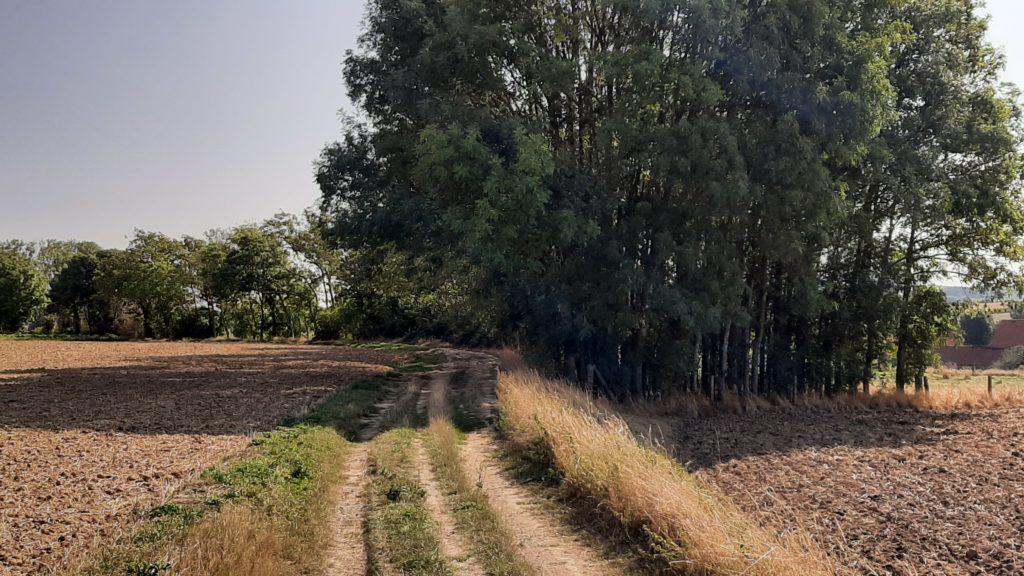 La balade des Hameaux - A l'ombre du sentier
