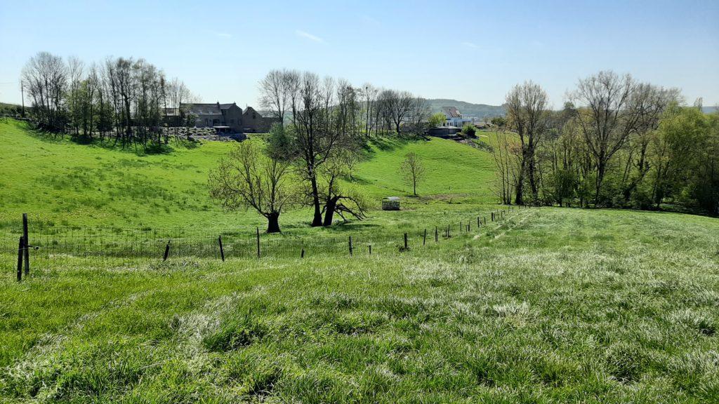 Croix Grise - La colline du Relambu